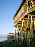 Stilted Buildings, Zone of Castro, Chiloe, Chile, South America