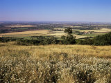 View from the Ridgeway of the Vale of Aylesbury, Buckinghamshire, England, United Kingdom