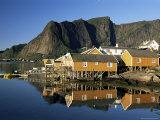 Fishing Village on Sakrisoya Island, Moskenesoya, Lofoten Islands, Nordland, Norway