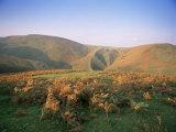 An Autumn Evening, the Long Mynd, Shropshire, England, United Kingdom