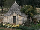 Trullo Near Locorotondo, Puglia, Italy