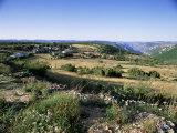 Landscape, Languedoc-Roussillon, France