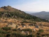 Mont Lozere, Near Finiels, Cevennes National Park, Lozere, Languedoc-Roussillon, France