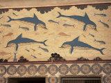 Dolphins, Knossos, Crete, Greek Islands, Greece
