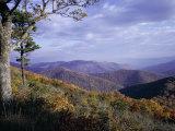 Area Near Loft Mountain, Shenandoah National Park, Virginia, USA