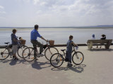 Family on Bicycles, Le Crotoy, Somme Estuary, Picardy, France