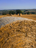 Hay Bales, Seen from the Cotswolds Way Footpath, the Cotswolds, Gloucestershire, England