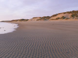 Beach at Alnmouth in Dawn Light with Ripples and Sand Dunes, Near Alnwick, Northumberland, England