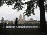 Jogger, Central Park, Manhattan, New York City, New York, USA