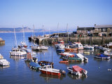 Boats in Harbour, Lyme Regis, Dorset, England, United Kingdom