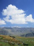 Snowdon from the Ranger Path, Gwynedd, North Wales, Wales, United Kingdom