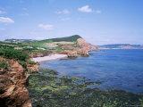 Sandstone Stacks and Cliffs, Ladram Bay, Devon, England, United Kingdom