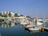 The Harbour, Torquay, Devon, England, United Kingdom