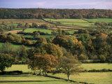 Otter Valley in Autumn, Devon, England, United Kingdom