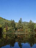 Lake Reflections, Near Jackson, New Hampshire, New England, USA