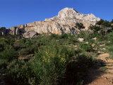 Montagne Ste. Victoire, Bouches Du Rhone, Provence, France
