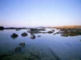 Favignana Island, Egadi Islands, Sicily, Italy, Mediterranean