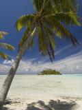 Blue Lagoon, Rangiroa, Tuamotu Archipelago, French Polynesia Islands