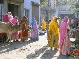 Typical Coloured Rajasthani Saris, Pushkar, Rajasthan, India