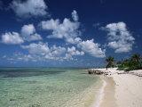 Palm-Fringed Beach, Cayman Kai, Grand Cayman, Cayman Islands, West Indies, Central America