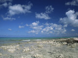 Rocky Shore, Grand Cayman, Cayman Islands, West Indies, Central America