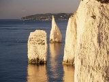 Early Morning Light on the Pinnacles, Handfast Point, Studland, Dorset, England