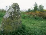 Battle Site, Culloden Moor, Highland Region, Scotland, United Kingdom