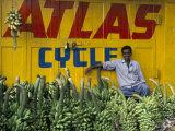 Bananas for Sale in the Market, Karnataka, India