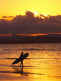 Person with Surfboard Walking along Beach at Sunset, Gold Coast, Queensland, Australia