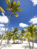 Southern Cross Club, Little Cayman, Cayman Islands, Caribbean