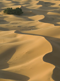 Erg Chebbi Dunes, Merzouga, Tafilalt, Morocco