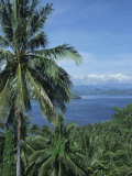 Tropical Coastal Scenery, Bougainville Island, Papua New Guinea, Pacific