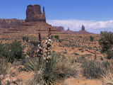 Monument Valley, Utah, United States of America (U.S.A.), North America