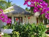 Hotel Accommodation, Baros, Maldive Islands, Indian Ocean