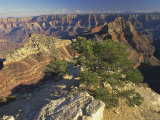 The Grand Canyon National Park, Unesco World Heritage Site, Arizona, USA