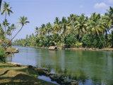 The Backwaters at Chavara, Kerala State, India, Asia