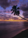 Gibbes Bay at Sunset, Barbados, West Indies, Caribbean, Central America