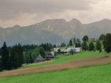Typical Polish Landscape Near Zacopane, Tatra Mountains, Poland, Europe