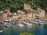 Portofino, Riviera Di Levante, Liguria, Italy