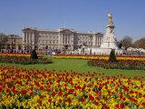 Buckingham Palace, London, England, UK