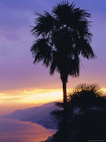 Sunset, Camogli, Looking West Along Portofino Peninsula, Liguria, Italy, Europe