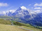 View from Grindelwald-Frist to Wetterhorn, Bernese Oberland, Swiss Alps, Switzerland, Europe