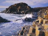 The Giant's Causeway, Co Antrim, Northern Ireland