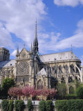 Notre Dame Cathedral, Paris, France, Europe