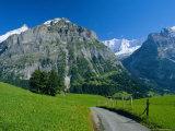 View Along Path Through Fields to the Schreckhorn and Fiescherhorner, Swiss Alps, Switzerland