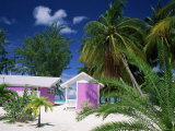 Colourful Beach Hut Beneath Palm Trees, Rum Point, Grand Cayman, Cayman Islands, West Indies