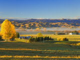 Farmland, Alexandra, Central Otago, South Island, New Zealand, Pacific