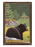 Black Bear in Forest, Washington