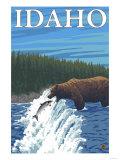 Bear Fishing in River, Idaho