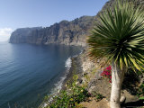 Los Gigantes Cliffs, Tenerife, Canary Islands, Spain